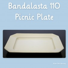 110 Picnic Plate