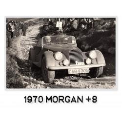 Morgan +8